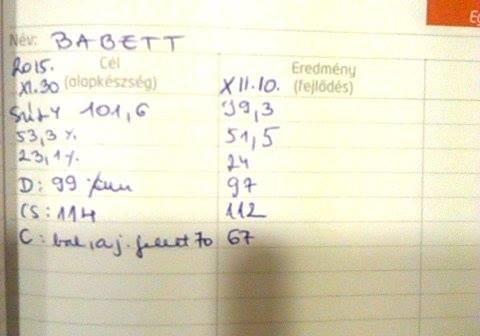 Súly: -2,3 kg Testzsír: -1,8% Izom: +0,9% Derék: -2 cm Csípő: -2 cm Comb: -3 cm